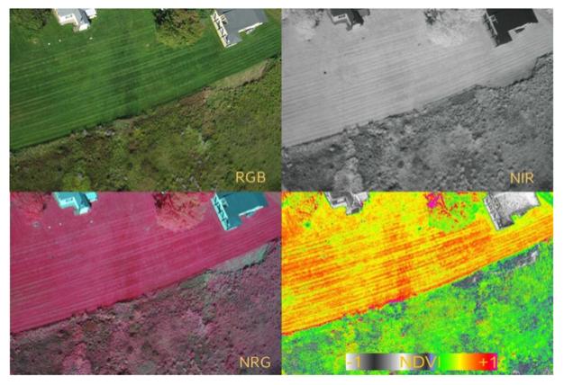 Satellitenbilder_AgriCircle